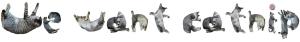 We want catnip